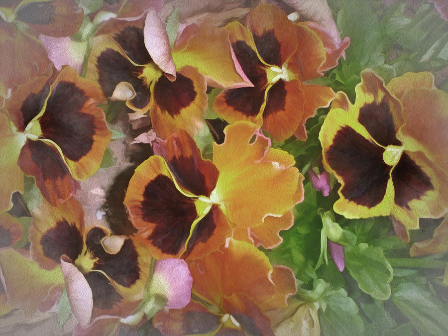 Flaming Pansies 9  by Lynda Lehmann