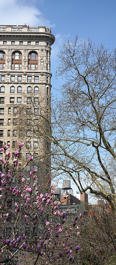 Flatiron Building New York 11 by Andrew Fare