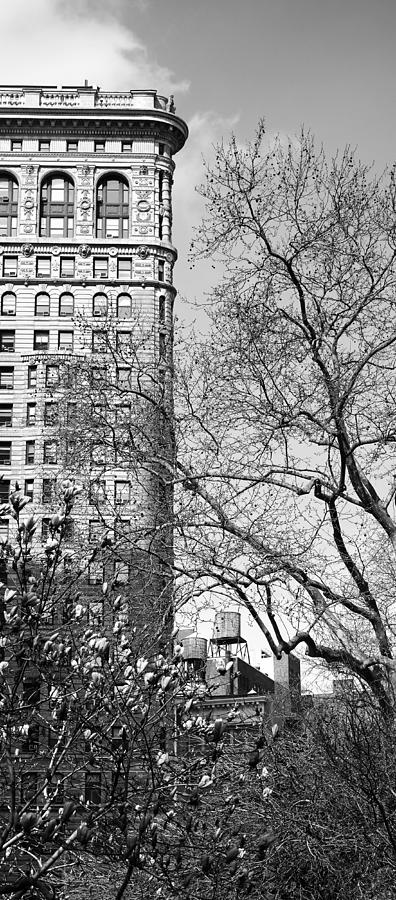 Flatiron Building New York 12 by Andrew Fare
