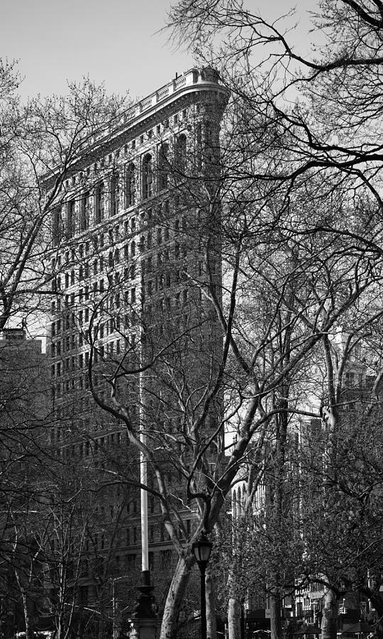 Flatiron Building New York 7 by Andrew Fare