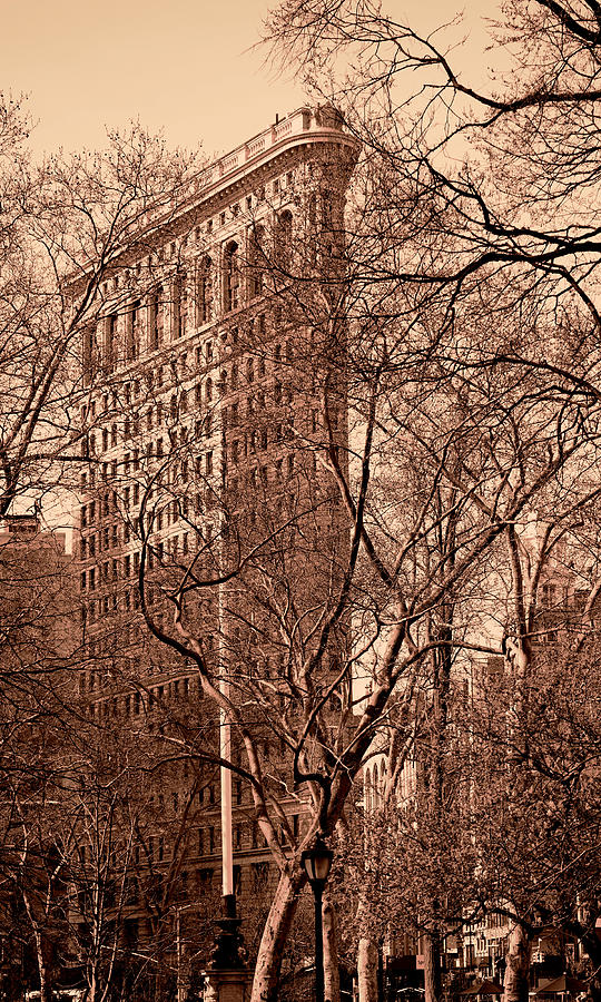Flatiron Building New York 8 by Andrew Fare
