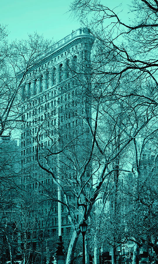 Flatiron Building New York 9 by Andrew Fare