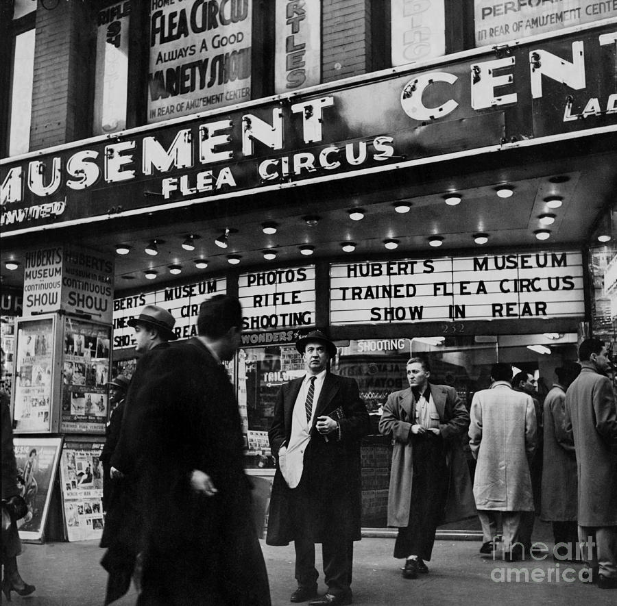 Flea Circus On 42nd St. Amusement Photograph by New York Daily News Archive