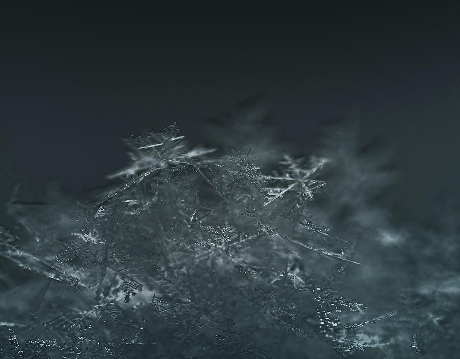 Glittering Flurries by Kevin Schwalbe