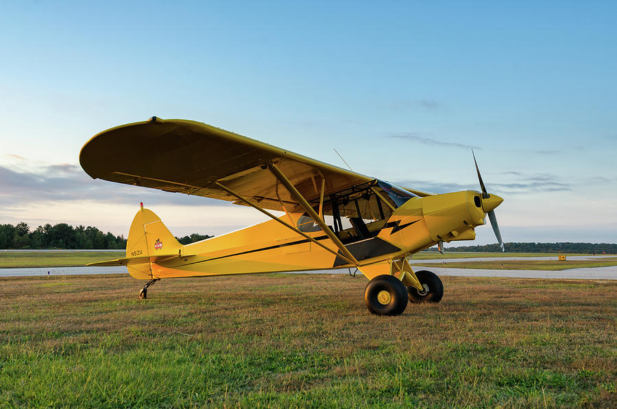 Flight at Dawn by Chris Buff
