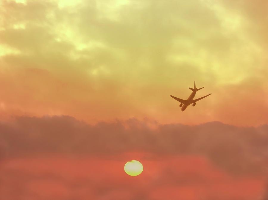 Flight Photograph by Images Etc Ltd
