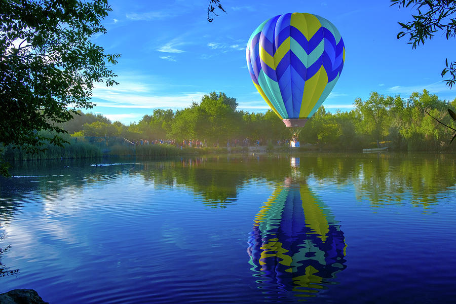 Floating Reflections by Robin Mayoff