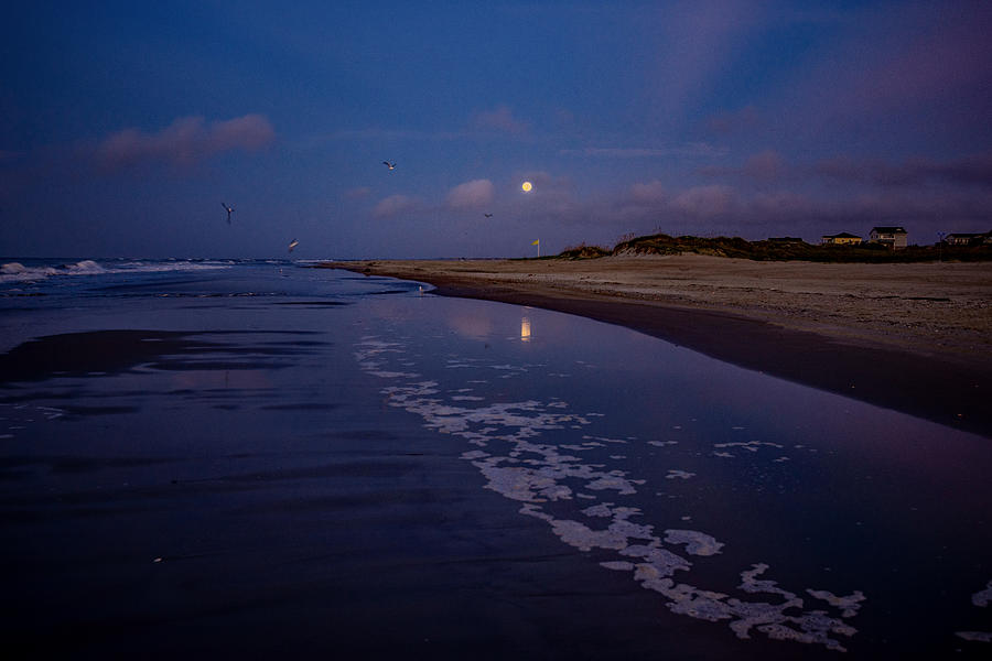 Flood Tide Moon  by John Harding
