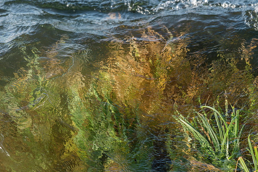 Flood Tide by Robert Potts