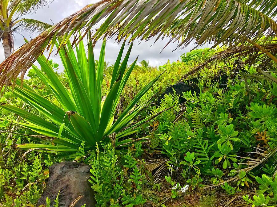 Flora Makai Seaview Aloha  by Joalene Young