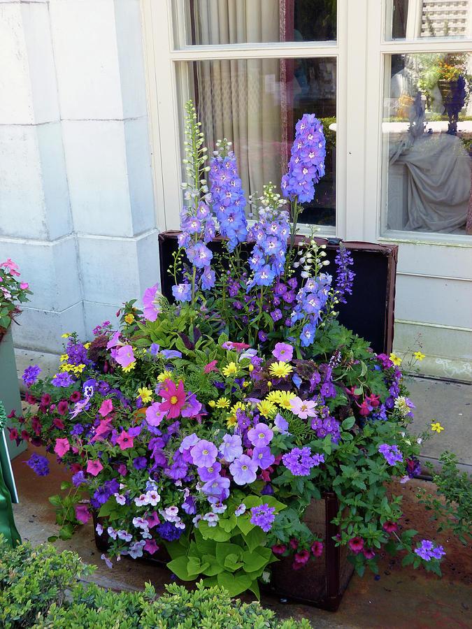 Floral Display by Toni Leland