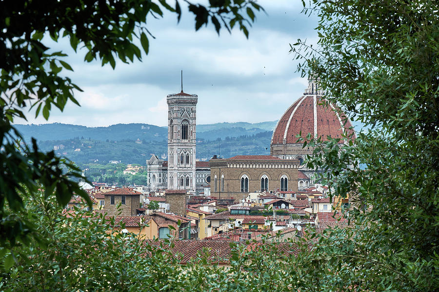 Florence and the Cathedral from the Boboli Gardens by Eduardo Jose Accorinti