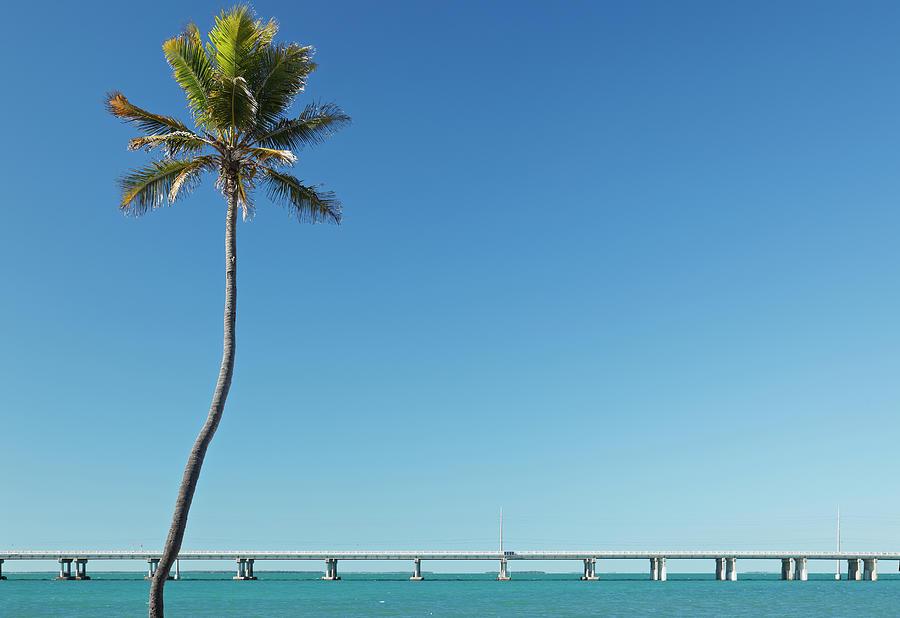 Florida Keys Landscape Photograph by S. Greg Panosian