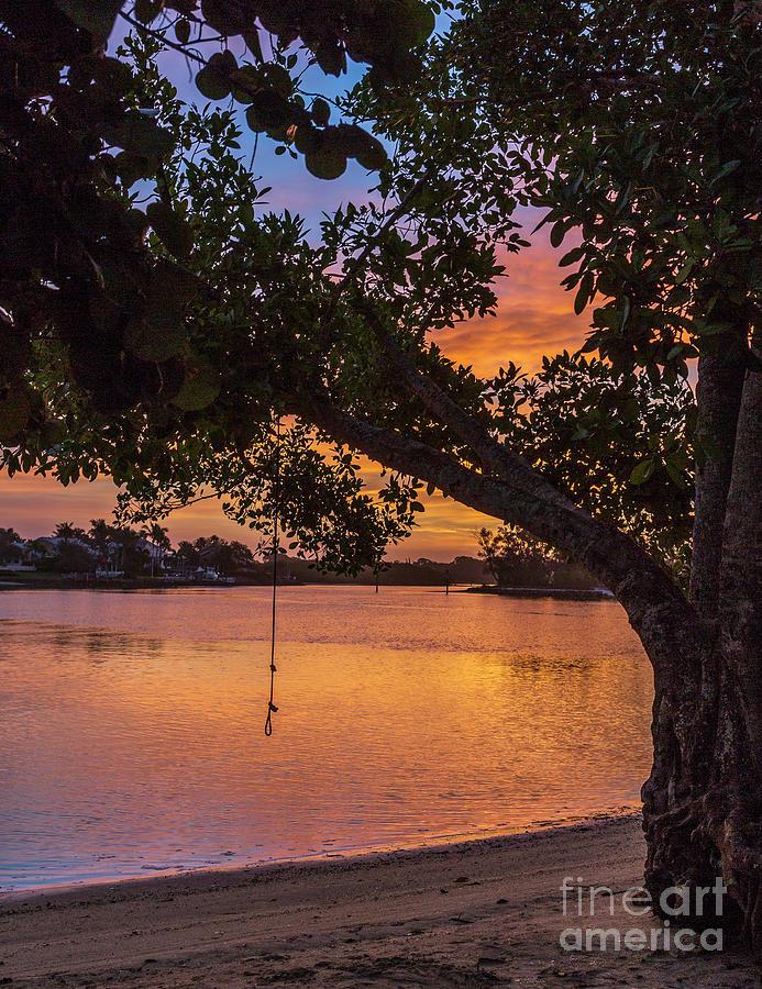 Florida Morning by Karin Pinkham