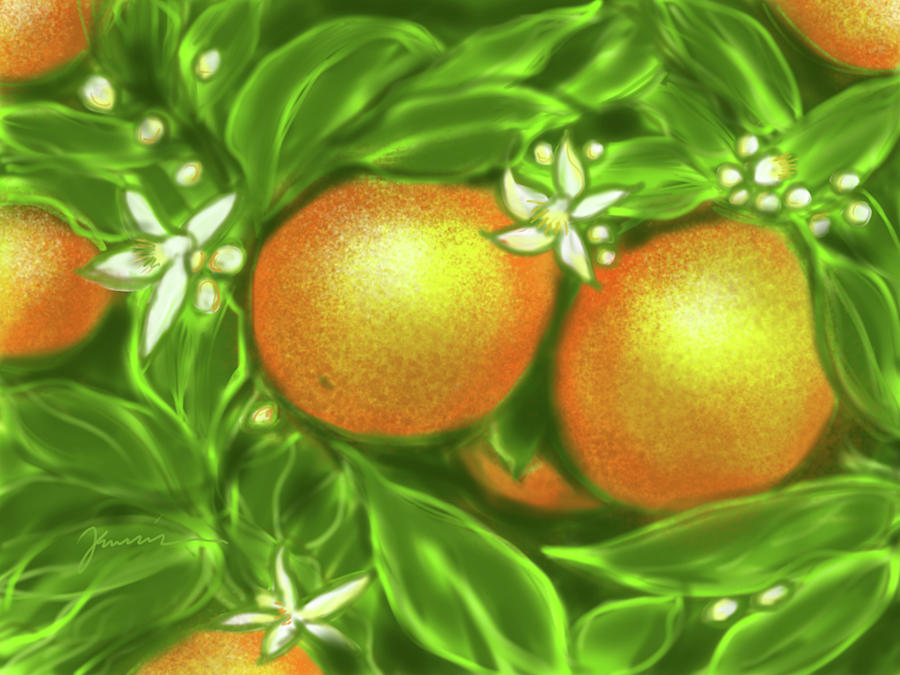 Florida Oranges by Jean Pacheco Ravinski