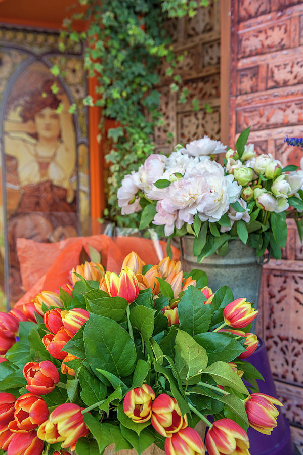 Blooming Photograph - Florist Shop, Cabourg, Normandy, France by Lisa S. Engelbrecht