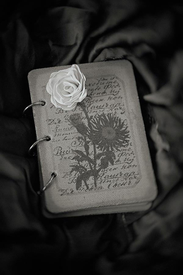 Flower #9711 by Andrey Godyaykin
