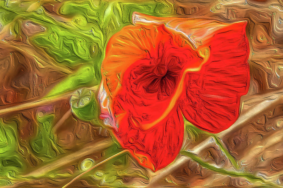 Flower Abstract Impression #01 by Dimitris Sivyllis