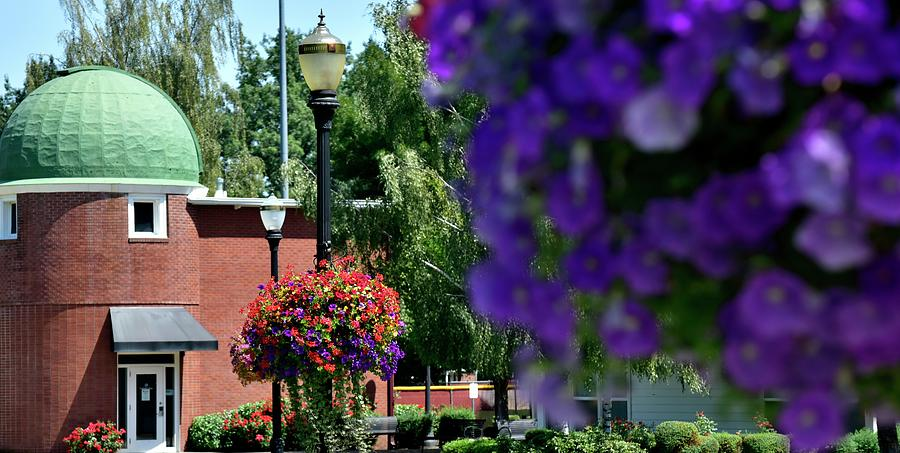 Flower Baskets On Linfield Campus by Jerry Sodorff