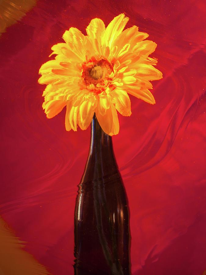 Flower Bottle by Stewart Helberg