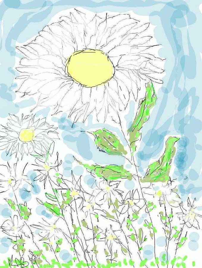 Flower Field by Kathy Barney
