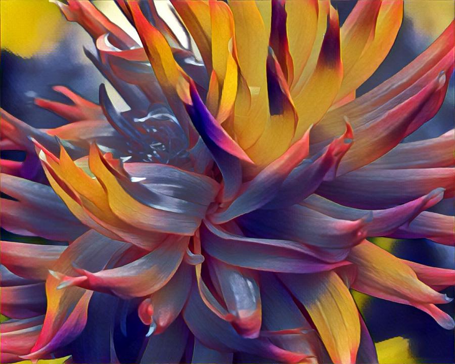 Flower Power by Susan Rydberg
