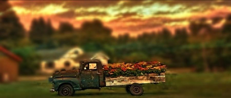 Flower Truck Photograph by Photo Crane
