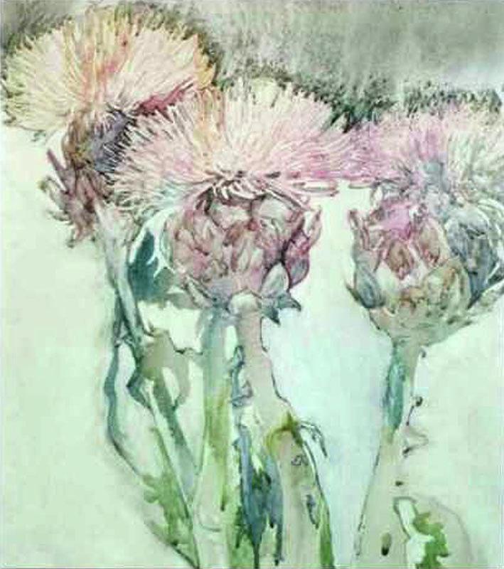 Flowering Artichokes by Edie Schneider