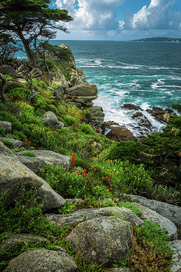 Flowers above the Waves by Rick Strobaugh