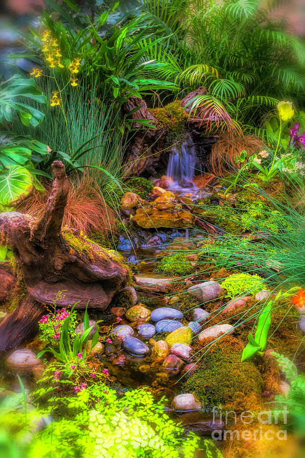 Flowers and Rocks by Nick Zelinsky
