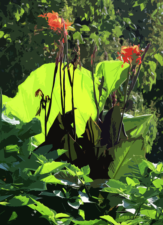 Botanical Photograph - Flowers at Tower Grove Park by John Lautermilch