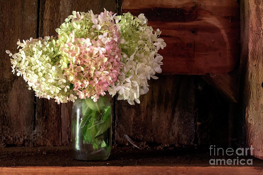 Flowers in the Barn by Debra Fedchin