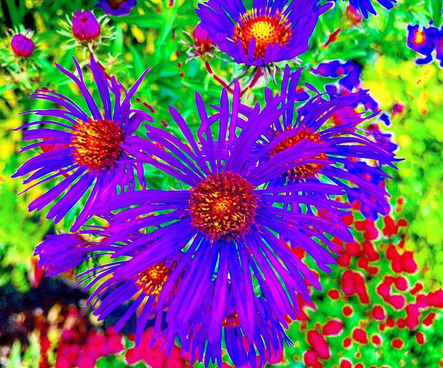 Flowers in Wonderland by Michael Oceanofwisdom Bidwell