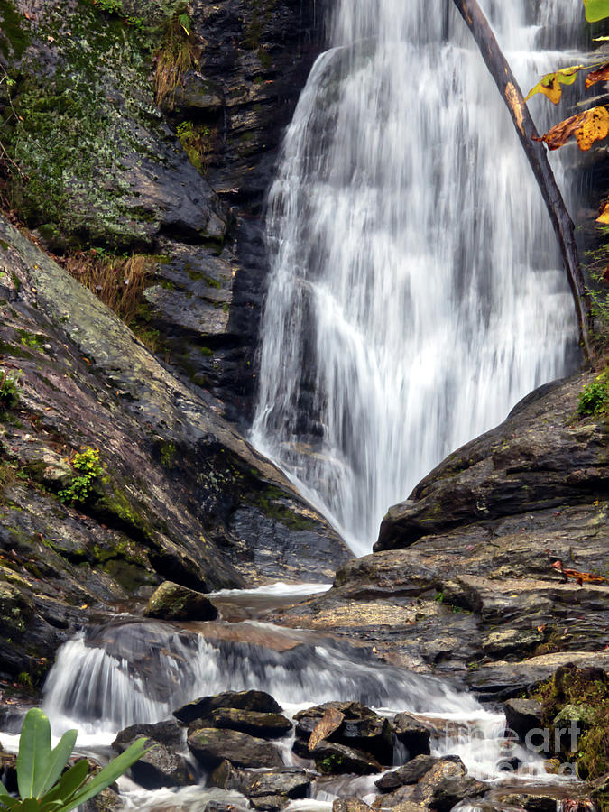 Flowing Toms Creek Falls by Amy Dundon
