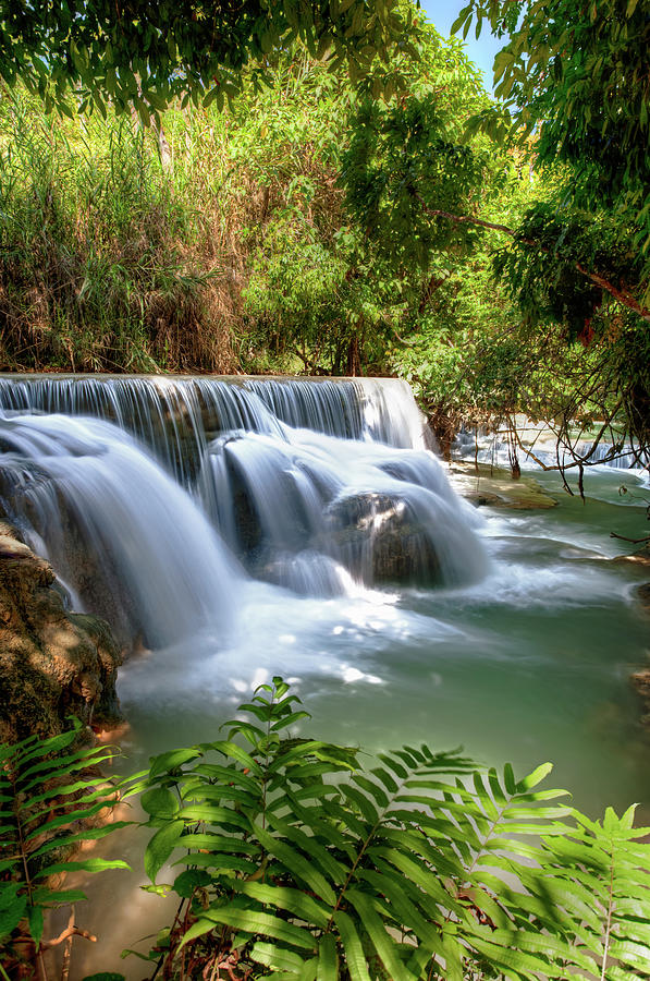 Flowing Water Under Trees - Laos Photograph by Fototrav