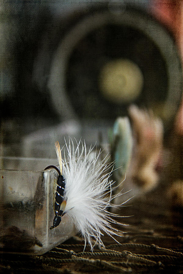 Fly Fishing Photograph - Fly Fishing by Cindi Ressler