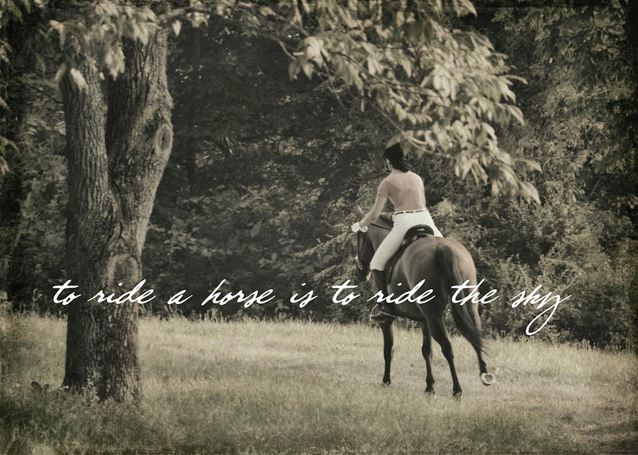 Horse Photograph - Fly Like Pegasus Quote by JAMART Photography