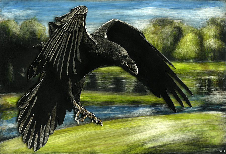 Flying Crow by William Underwood