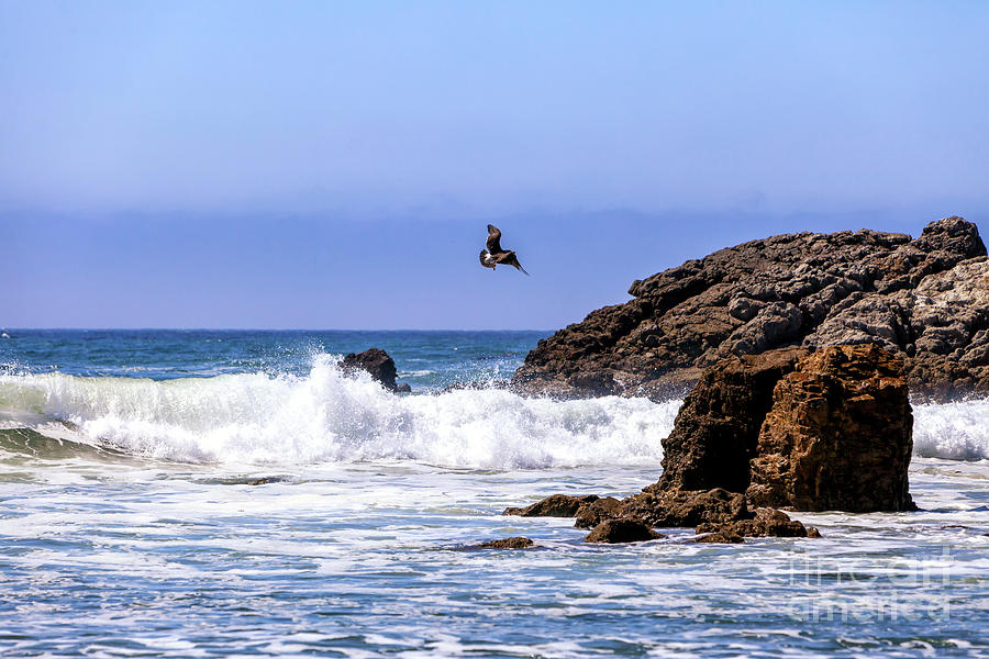 Flying Over Point Dume in Malibu by John Rizzuto
