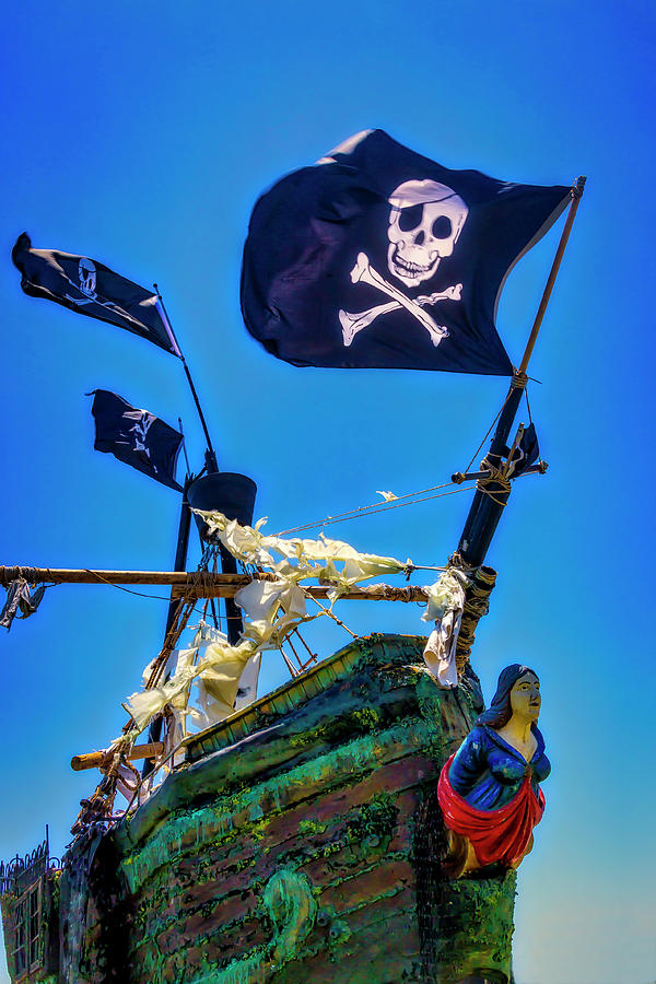 Flags Photograph - Flying The Pirates Colors by Garry Gay