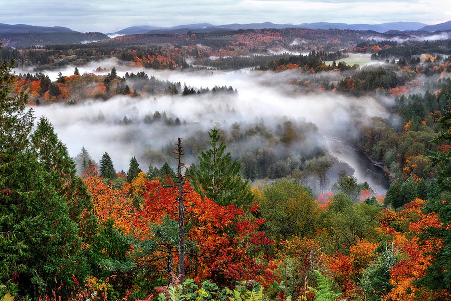 Fog In The Valley by Wes and Dotty Weber