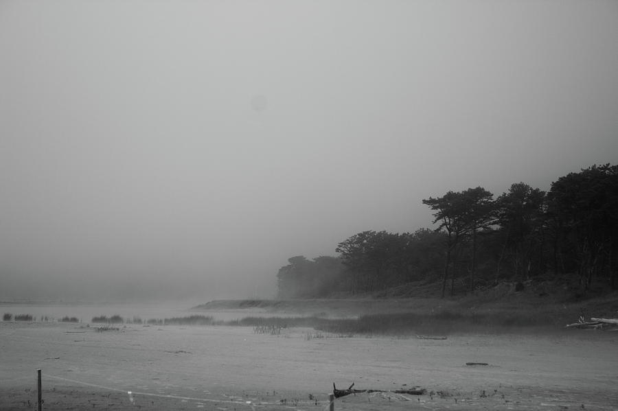 Foggy beach by Jean Evans
