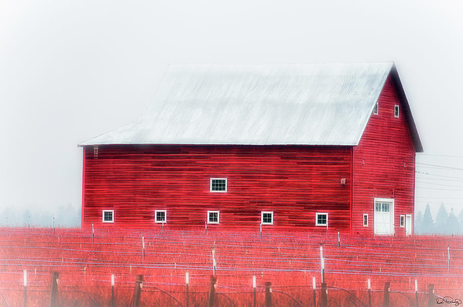 Foggy Country Scene by Dee Browning