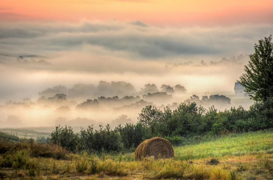 Foggy Country Sunrise by Fiskr Larsen