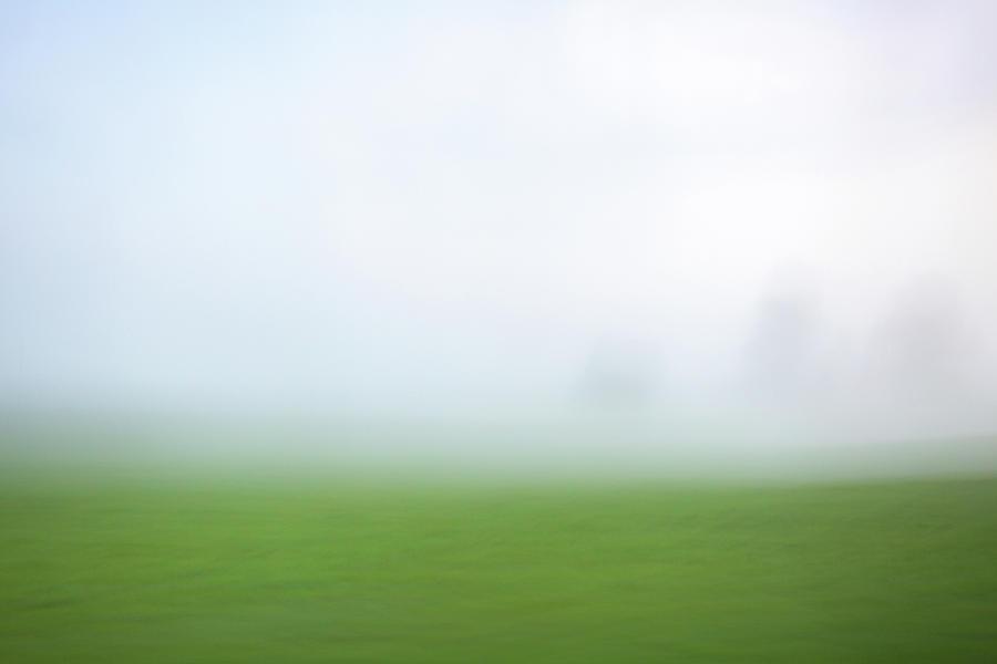 Foggy Field by Kolter Gunn