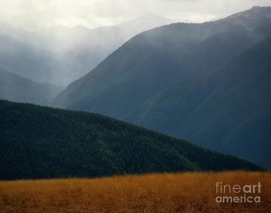 Foggy morning along Hurricane Ridge by Izet Kapetanovic
