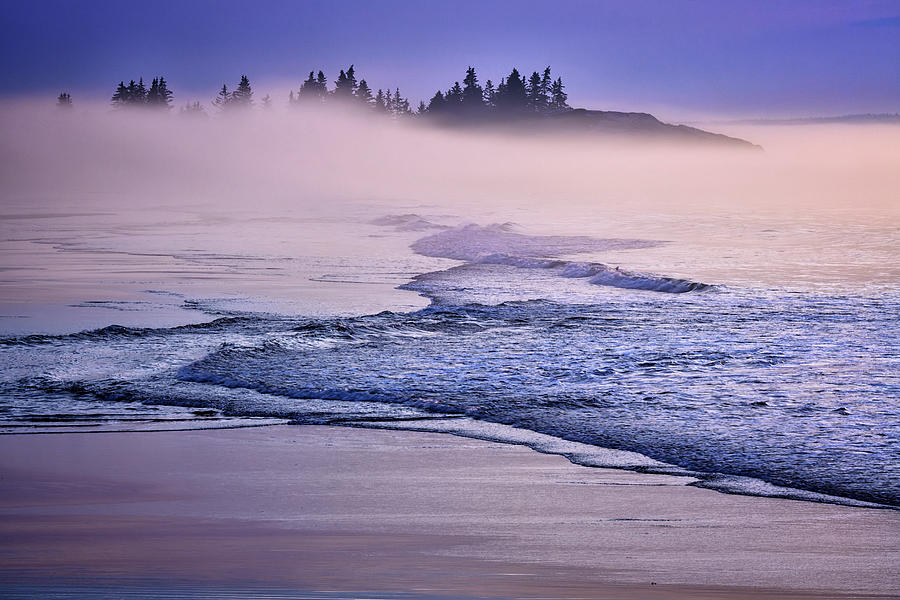Foggy Morning at Griffith Head by Rick Berk