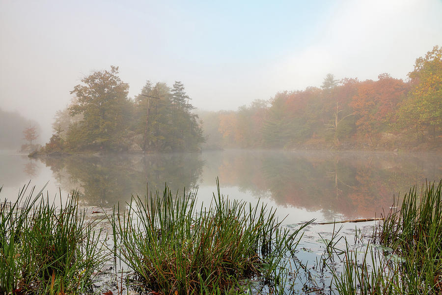 Hudson Valley Photograph - Foggy Morning At Sanctuary Pond by Jeff Severson
