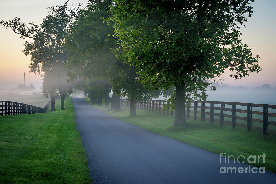 Foggy Morning Sunrise - Horse Country - Kentucky Bluegrass by Gary Whitton