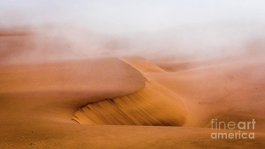 Foggy Namib Desert by Lyl Dil Creations